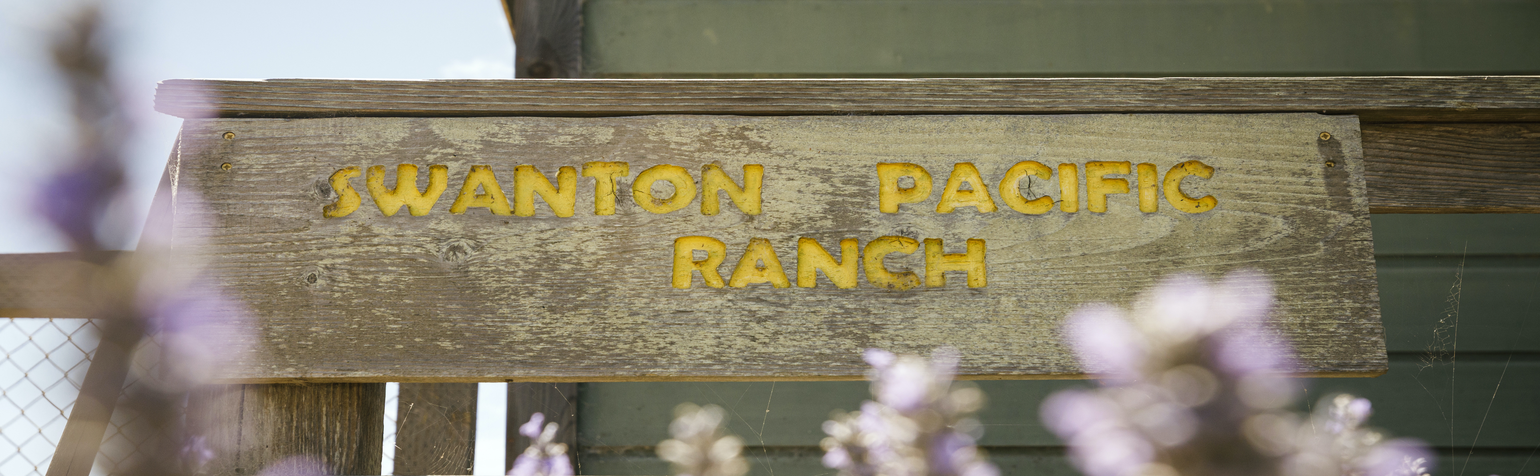 Swanton Pacific Ranch